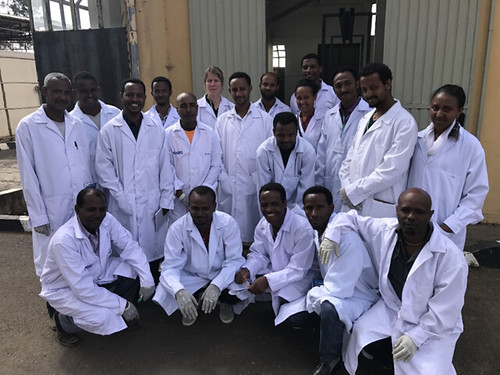 Mar/2017 - On 6–8 February 2017, scientists from the International Livestock Research Institute (ILRI)  in collaboration with the Swedish University of Agricultural Sciences (SLU) and Ethiopia's National Animal Health Diagnostic and Investigation Center (NAHDIC) organized a training course for 16 veterinarians, laboratory technicians and assistant veterinarians working in government research centers and agricultural offices in Ethiopia. The training was funded by the CGIAR Research Program on Livestock and the International Fund for Agricultural Development (IFAD)-funded  Small Ruminant Value Chain Transformation (SmaRT) project.