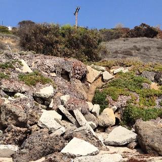 Where's Waldo? (Actually, this trailer's name is Lucy.) #airstream #airstreamdc2cali #vintageairstream #malibu #california
