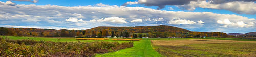 Foliage of Mount Pleasant, Ithaca | by stanzhou2013