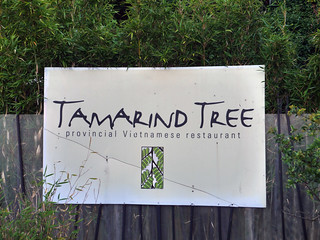 Tamarind Tree in Seattle | by frankfarm