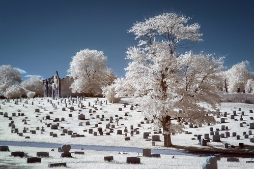 abstract tree philadelphia cemetery graveyard ir mt pennsylvania headstones historic mount pa infrared philly tombstones gatehouse moriah