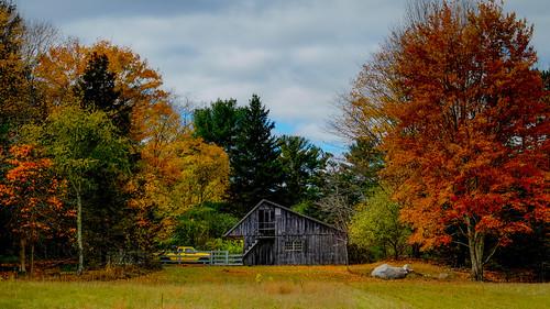 autumn landscape newengland rhodeisland fujifilm 1855 xe1 maxwellmayswildliferefuge