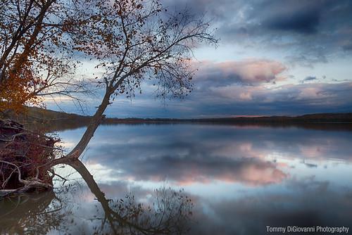 Saganashkee Slough   by Tommy DiGiovanni