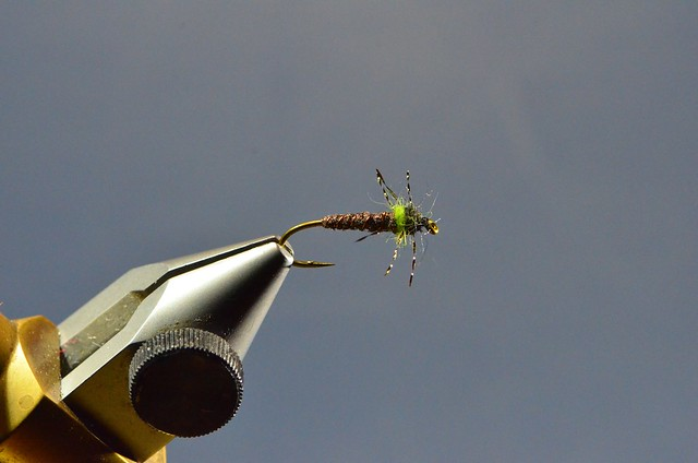 The Caddis Fly: Oregon Fly Fishing Blog   McKenzie River fly