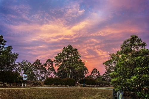 trees sunset sky clouds parks forestlake sunsetsandsunrisesgold cloudsstormssunsetssunrises