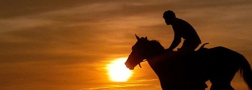 silhouette sunset shangumugham beach horse riding scenic sun