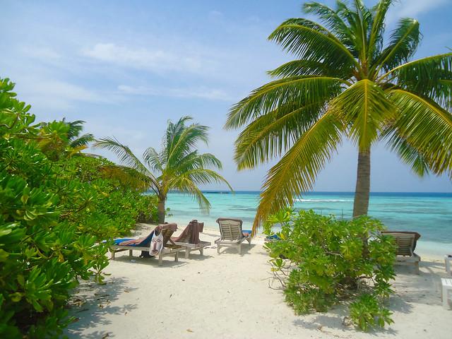 Maldives Diary