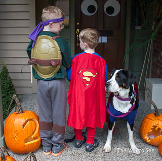 Halloween 2014 2.jpg | by The Will to See