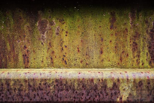 Moss On Rust On Bridge
