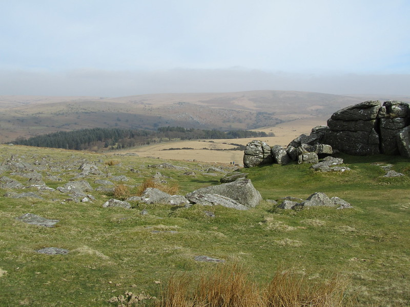 Sheeps Tor, looking to Roughtor Plantation