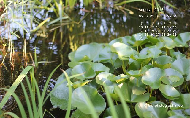 teich_august_kalender_die-photographin