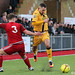 Worthing v Sutton - 14/01/17