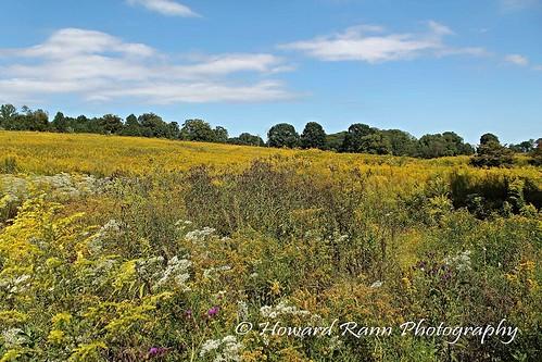 longwood gardens kennett square pennsylvania united states america