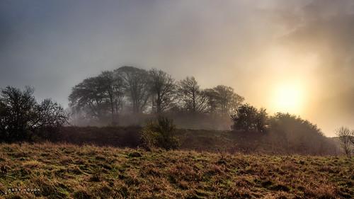 morning trees england mist sunrise landscape unitedkingdom sony gb castlehill wallingford a77 wittenhamclumps southoxfordshire sonyalpha andyhough slta77 andyhoughphotography