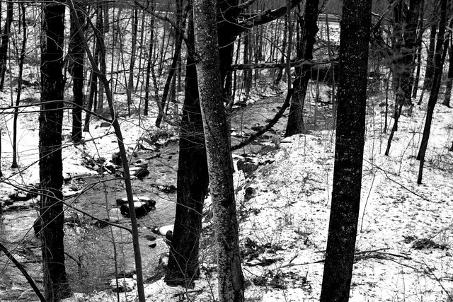 Mill Stream, B&W - Explored