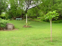 Millennium Peace Garden | by jamesbynes