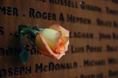 Vancouver AIDS Memorial (2)
