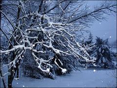Soir-de-neige