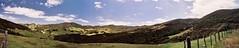Coromandel Town - Panorama