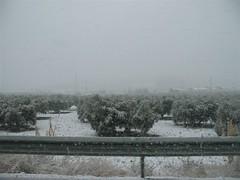 Carretera Jaén Códoba Nevada