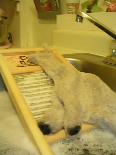 Llama Bath 2