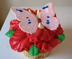 butterflycupcake