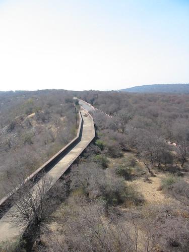 Jaipur - Two roads diverged...