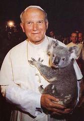 pope koala