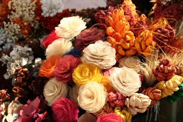 Flores do Cerrado  624