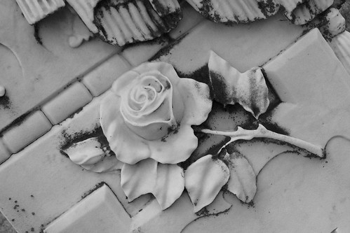 A Rose on the grave | by Valerie Reneé