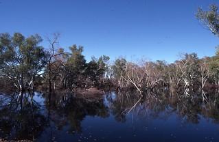 Ophthalmia Dam, Newman, Western Australia