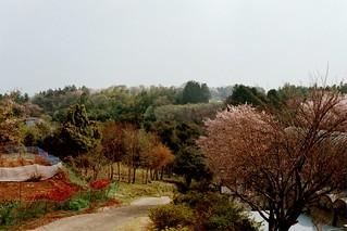 Kakueiji Temple