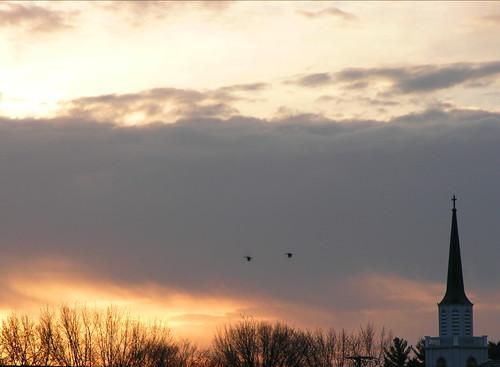 morning light sky birds clouds sunrise skyscape steeple