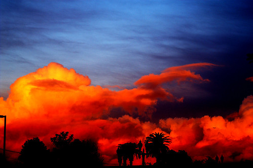 california blue trees red sky silhouette topv111 clouds landscape interestingness skies 100v10f explore burning palmtrees orangecounty santaana