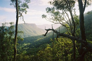 Buchanan's Fort, Lamington National Park, QLD | by Jussarian
