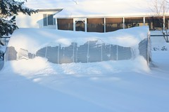 Buried Greenhouse | by albertahomegardening