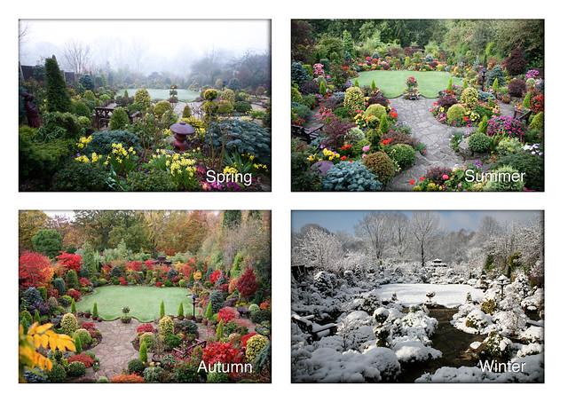 Four Seasons in a Garden