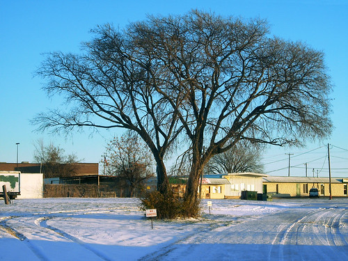 road christmas winter snow tree field sunrise texas commercialbuilding northrichlandhills