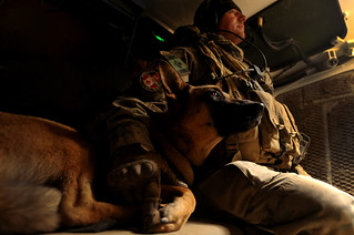 A Man and his Bomb Dog | by AfghanistanMatters