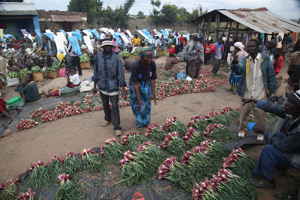 Food market near Khulungira Village, in central Malawi (photo credit: ILRI/Stevie Mann).