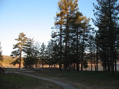 california sunrise pines evergreens bigbear