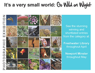 WOW! Go Wild on Wight & IWPOY 2009 exhibitions | by s0ulsurfing