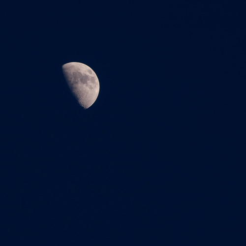 Just the Moon | by J e n s