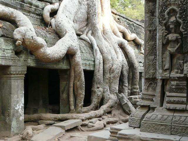 Templo Ta Phrom en Angkor (Camboya)