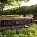 Hackberry Creek