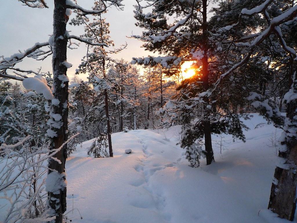 Vartiosaari Helsinki