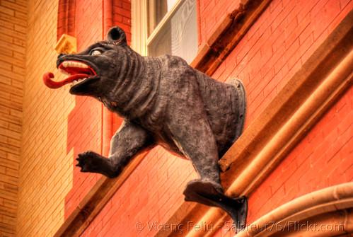 bear geotagged nc nikon downtown cityhall northcarolina pepsicola hdr vicenç newbern photomatix alienskin d80 cravencounty nikond80 feliú tamron18270 sabreur76 vicençfeliú kodakecktachrome100g geo:lat=35106687 geo:lon=77038382