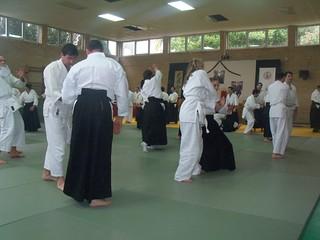 XIII Aikido Koshukai in Vigo (Spain) (12)