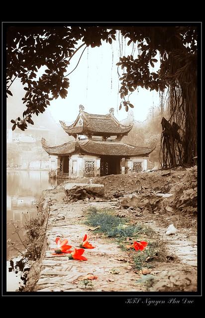EXPLORED The threshold drops of sunshine - Giọt nắng bên chùa