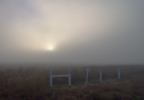 sun field grass fog sunrise dawn katy fenceposts katytexas browngrass